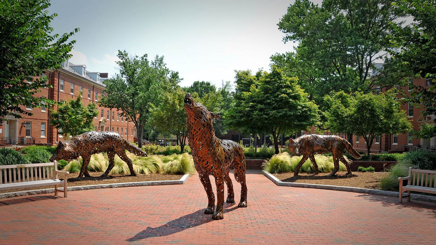nc state wolves statues